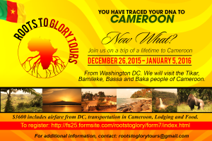 Cameroon 2015